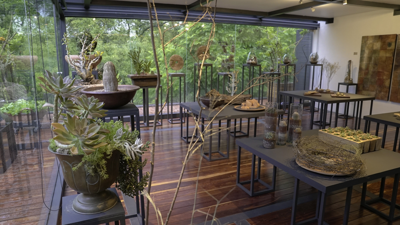 Terrarios, instalaciones y macetas de Toni Ferreira